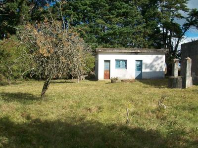 Campo Con Casa